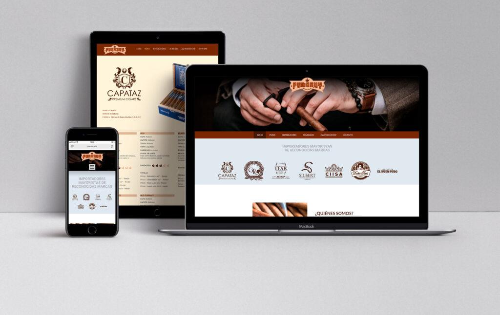 Diseño UI/UX de website